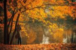 woman-taking-photo-by-the-lake-in-autumn-bucharest-romania